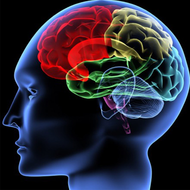 кафедра психологии мгу